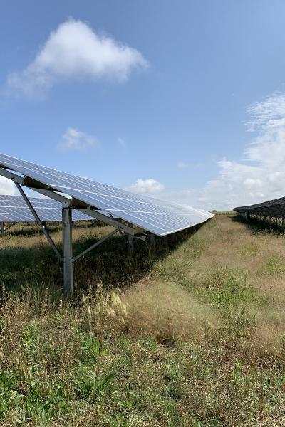 Erin Community solar garden