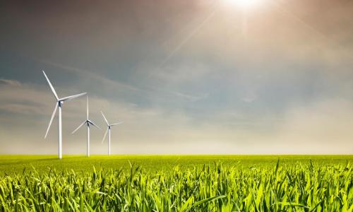wind turbines in sun rays
