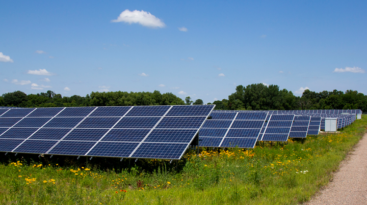 Solar garden in Norwood Young America