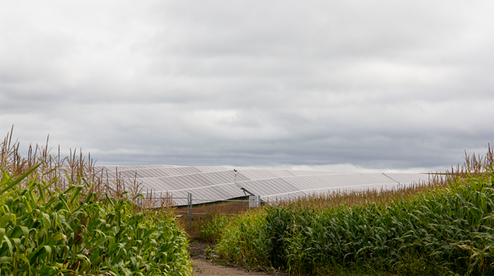 Solar panels part of a solar plus storage project near Detroit Lakes